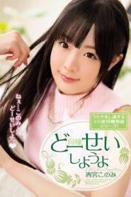 >Konomi Nishinomiya ใช้ชีวิตร่วมกัน MIDE-411 ซับไทย jav